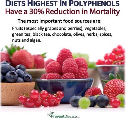 Berries Powerful-polyphenols
